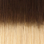 4t22 Chocolate brown to light golden blonde