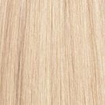 60 613 Light platinum blonde light blonde