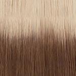 60t6 Light platinum blonde to chestnut brown