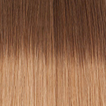 6t16 Chestnut brown to light brown toffee 1